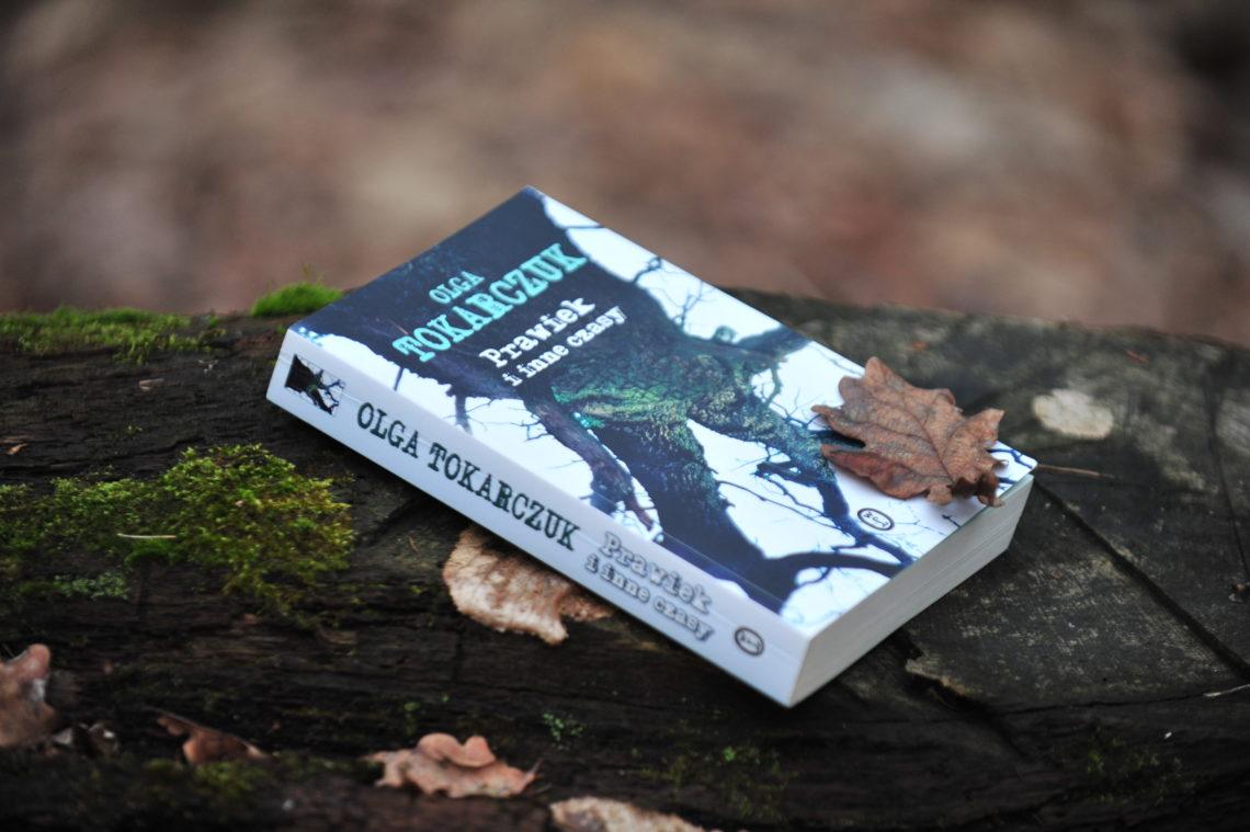 książka leżąca w lesie na powalonym drewie