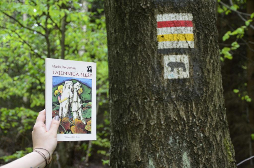"""Droga na szczyt góry Ślęży, pokazany znaczek szlaku na drzewie i ręka trzymająca książkę dla dzieci """"Tajemnice Ślęży""""."""
