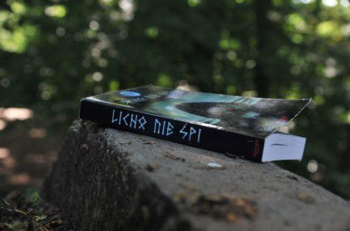 Książka leżąca na kamiennym murku w lesie